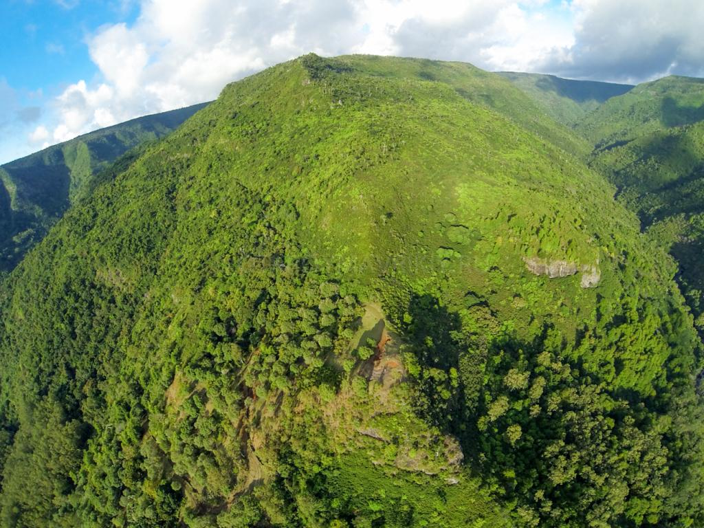 Национальный парк. маврикий экскурсии отзывы и цены