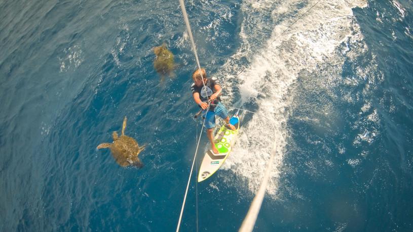 Кайтсерфинг с черепахами