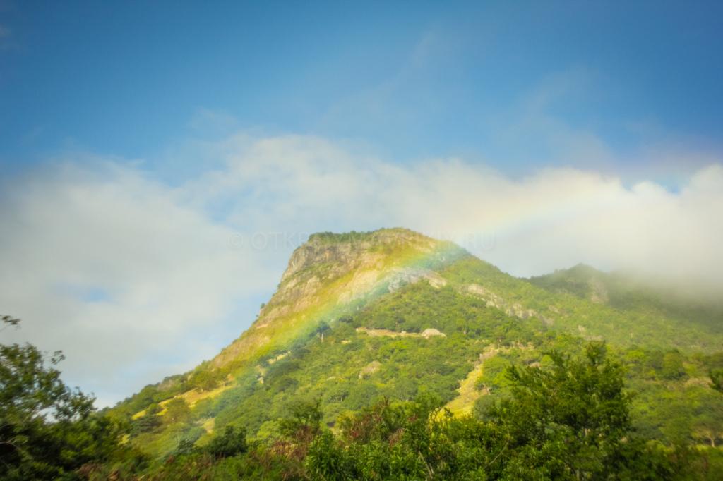 По дороге в Ля Галлет, Маврикий