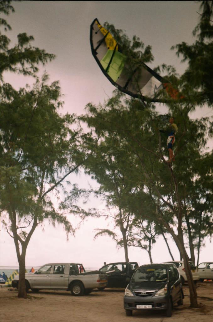 Кайт на дереве в Ле Морне, Маврикий - это случается часто.