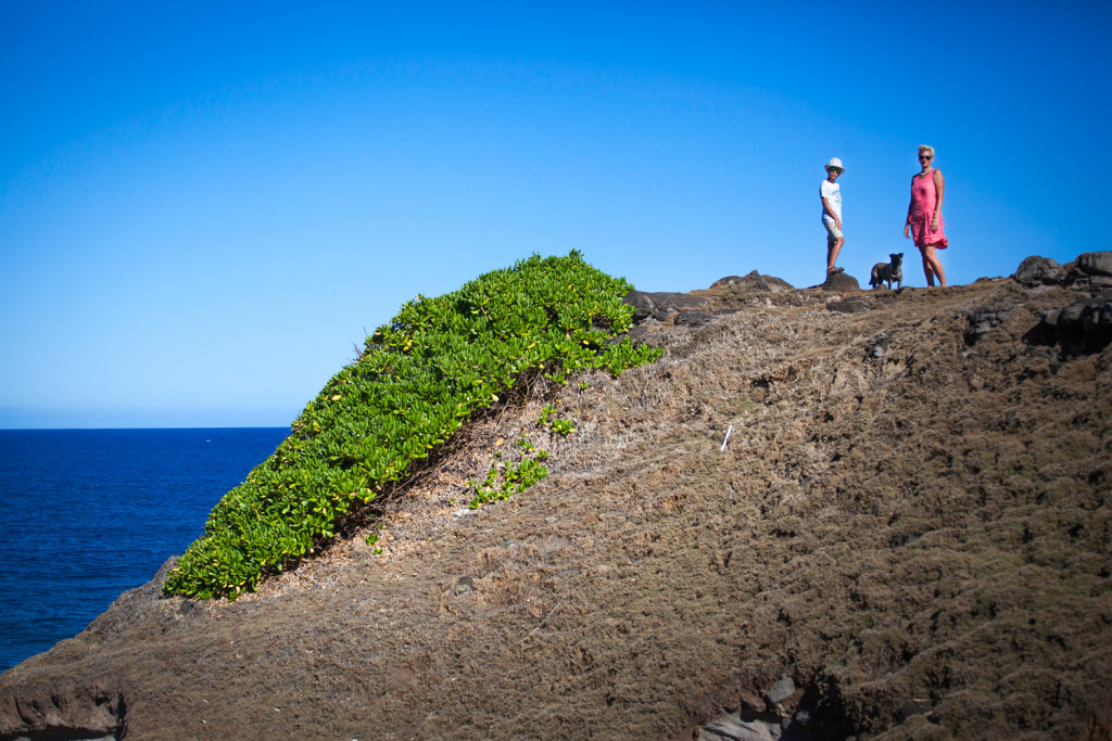 Фото сессия на Гри Гри Маврикий.
